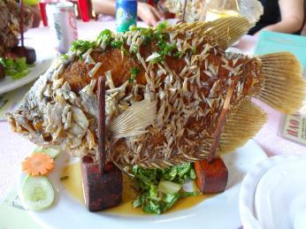 Zajímavé druhy ryb se loví vdeltě Mekongu