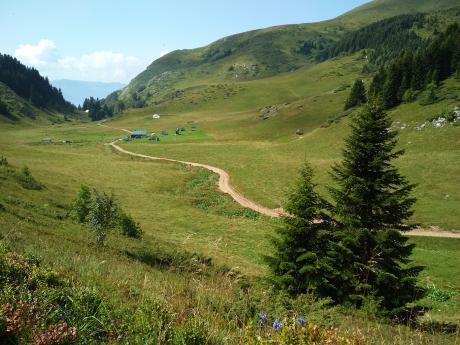 Pohoří Bjelasica charakterizují rozlehlé pastviny