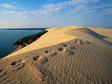 Písečné duny na Kurské kose