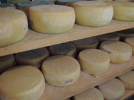 Kola sýrů na jedné ze slovinských salaší