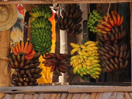 Banány všech barev, chutí avelikostí vMto Wa Mbu